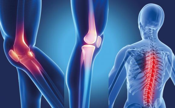 Ortopedi & Travmatoloji